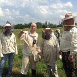 В Новгородской области создают координационный совет по информатизации и ассоциацию пчеловодов