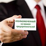 Региональных бизнес-омбудсменов хотят приравнять к министрам