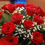 В Великом Новгороде возбудили дело против парня, который подарил цветы сразу двум знакомым девушкам