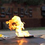 Читатели «Ваших новостей» поддерживают караул у Вечного огня – но он должен быть добровольным