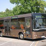 Новгородская мэрия готовится закупить 40 новых автобусов «МАЗ»