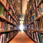 Новгородские библиотеки будут оптимизировать