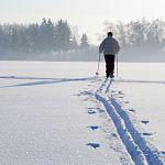 Сотрудники МЧС под Великим Новгородом помогли лыжнице
