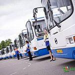 Новгородские власти договорились о продлении аренды питерских автобусов на три года