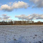 Новгородской области не хватает земли для реализации сельскохозяйственных проектов