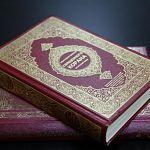 Марокканца, который распространил экстремистскую книгу в Великом Новгороде, оштрафовали