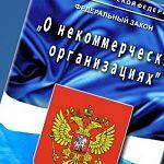 В Новгородской области семь НКО получат субсидии из бюджета