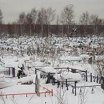 Житель Великого Новгорода подал в суд на сестру из-за могилы отца