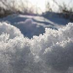 СК: «В Новгородской области женщина закопала новорождённого в снег на могиле родителей»