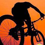 В Окуловском районе полицейские устроили засаду ворам-велосипедистам