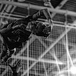 Новгородского фотокорреспондента аккредитовали на Олимпийские игры в Бразилии
