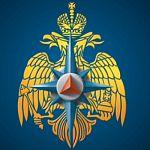 Должность начальника ГУ МЧС по Новгородской области будет генеральской