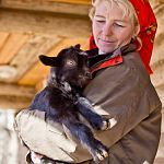 В «Витославлицах» родились пятеро козлят