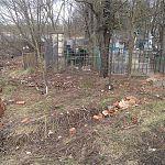 Новгородского губернатора возмутило состояние братской могилы на Петровском кладбище