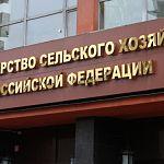 СМИ прочат назначение министром сельского хозяйства многим российским губернаторам