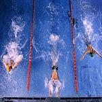 Новгородские пловцы не пробились в состав сборной на Европейские игры и чемпионат мира