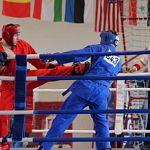 Новгородец стал вице-чемпионом России по универсальному бою