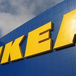 Арбитраж отказал Росимуществу в виндикационном иске к «Икее» из-за участка под новую фабрику