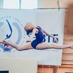 Новгородки завоевали две медали национального первенства по спортивной гимнастике