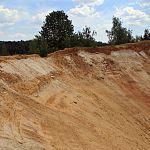 Новгородского бизнесмена заподозрили в том, что он нанёс ущерб природе на 58 миллионов, добывая песок