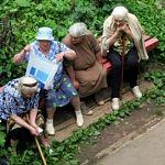 Депутаты предлагают освободить пожилых людей от уплаты взноса на капремонт: «это неполученные услуги»