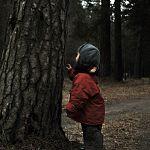 Потерявшийся в Хвойнинском районе двухлетний мальчик мирно спал в лесу