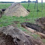 В Новгородской области ликвидируют 500-килограммовую бомбу со сбитого «Юнкерса»