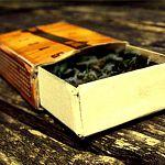 В Новгородской области два подростка были осуждены за торговлю наркотиками