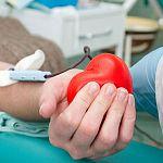 Главный трансфузиолог области получил почётное звание