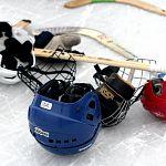 В Новгородской области собирают подписи за спасение хоккея с мячом в Боровичах