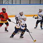 Новгородцы завоевали серебро на «Золотой шайбе»