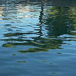 За сутки в реках области утонули два человека