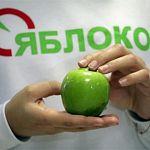 «Яблоко» выдвинуло Хиврича в Госдуму