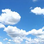 В Роспотребнадзоре оценили качество воздуха в Новгородской области