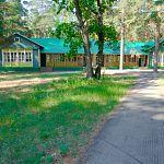 В Новгородской области осудили бухгалтера из «Лесной сказки»
