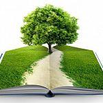 Депутат: Ежегодно Россия выбрасывает на помойку 120–130 миллионов деревьев