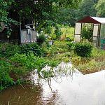 В Боровичском районе вышедшая из берегов река затопила садоводчество и огороды