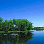 6600 часов проговорили по номерам «Мегафона» дачники на Селигере в Новгородской области