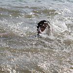 Найдено тело утонувшего у кремлёвского пляжа. Там же погиб ещё один купальщик