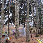 В Новгородской области похитили ограду воинского захоронения