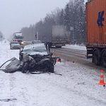 В снегопад на трассе «Россия» в Новгородской области погибла пассажир машины