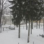 За сутки в Великом Новгороде выпала почти пятая часть месячной нормы осадков