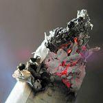 «Побороть невозможно»: количество нелегальных сигарет в России стремительно растёт
