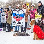 Делом хабаровских живодерок займется центральный аппарат Следственного комитета России