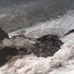 В Окуловке рыбак провалился под лёд и утонул
