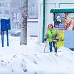 Несладкий ноябрь: синоптики снова обещают снегопад