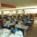 Новгородские компании стали привлекать больше рабочих из Северной Кореи