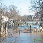 В Шимском районе вода с полей прорвала дамбу и подтопила пять жилых домов