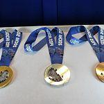 На выставке в филармонии новгородцам покажут награды олимпийских игр в Сочи и Рио