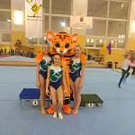 Новгородские гимнастки взяли три золота на «Кубке тигрёнка» в Риге